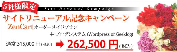 サイトリニューアル記念キャンペーン